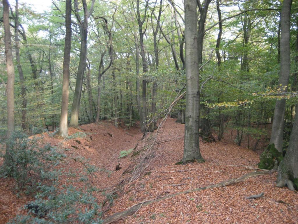 Limnes (Landwehr) Abschnitt Schermbeck; Foto: website clades veriana