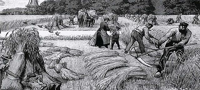Feldarbeit im 19. Jahrhundert