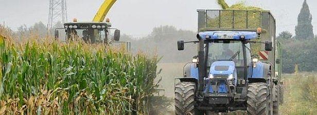 Grünschnitt für Biogas