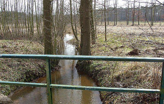 Gecksbach südlich der Frankenstraße; Foto: Christian Gruber