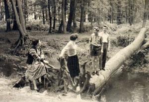 Der Hammbach am Buchenbusch bei Tüshaus in Deuten 1956