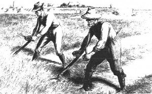 Westfälische Grasmäher in Holland 1896