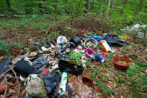 Müll-Illegale-Muellentsorgung
