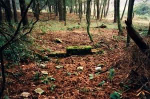 Reste der Fundamente der Landebahn (1997)