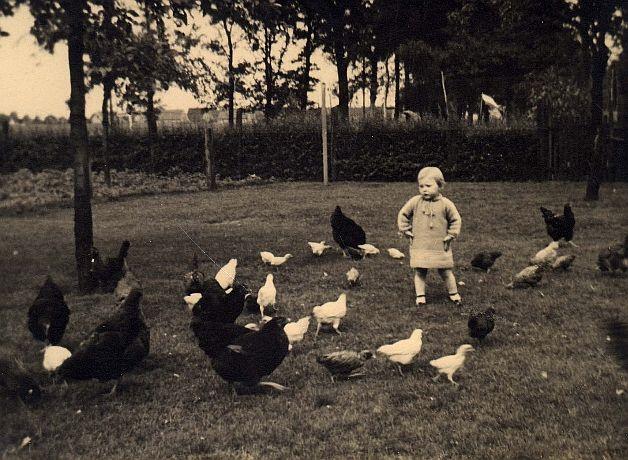 Auf zur Hühnerjagd