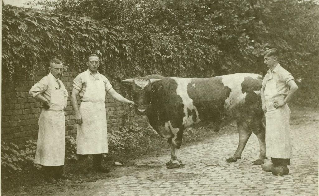 Metzger Hermann Perstein mit Gesellen