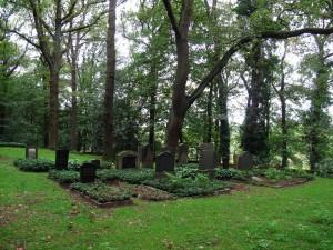 """Der Friedhof im """"Judenbusch""""; Foto: Wolf Stegemann"""