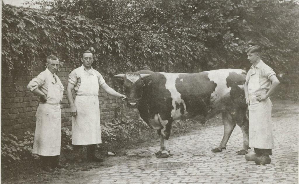 Metzger Hermann Perlstein mit Gesellen
