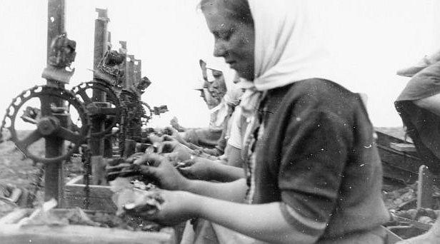 Tabakverarbeitung zur Zigarettenherstellung noch per Hand