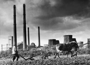Landwirtschaft udn Industrie nebeneinander